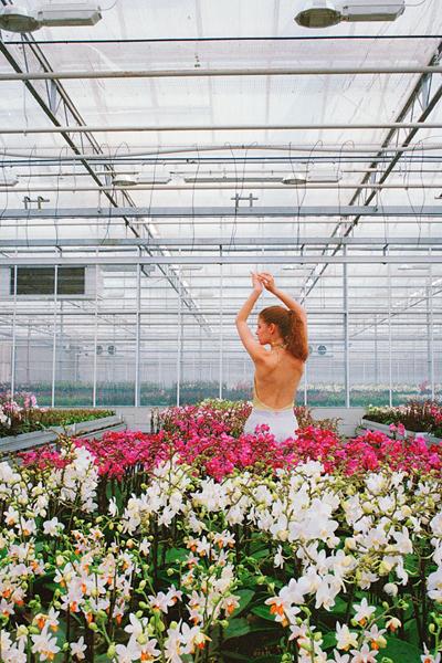 """Orchid"" di Jasmine Deporta"