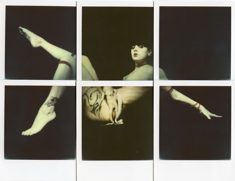 Pola-Shunga di Alan Marcheselli