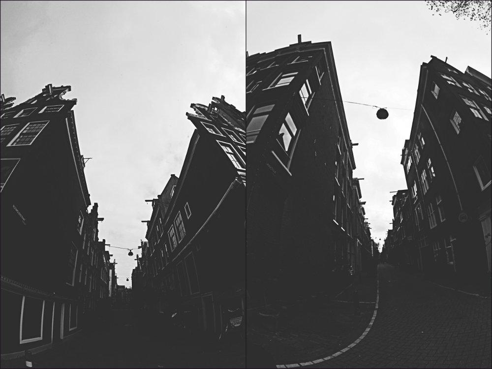 © Copyright Mattia Crepaldi