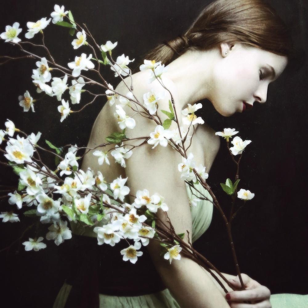 © Copyright Josephine Cardin