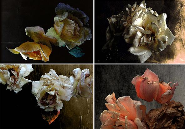 The dead life, 2013 - elaborazione digitale - cm 300x200