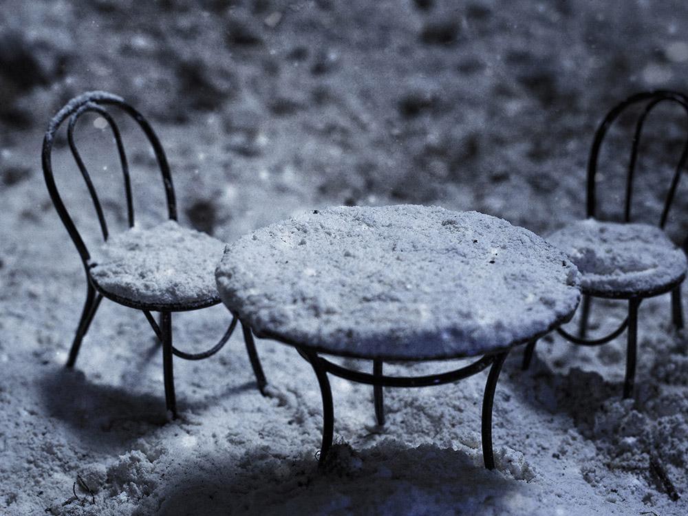 Winter garden - © Copyright Francesco Romoli