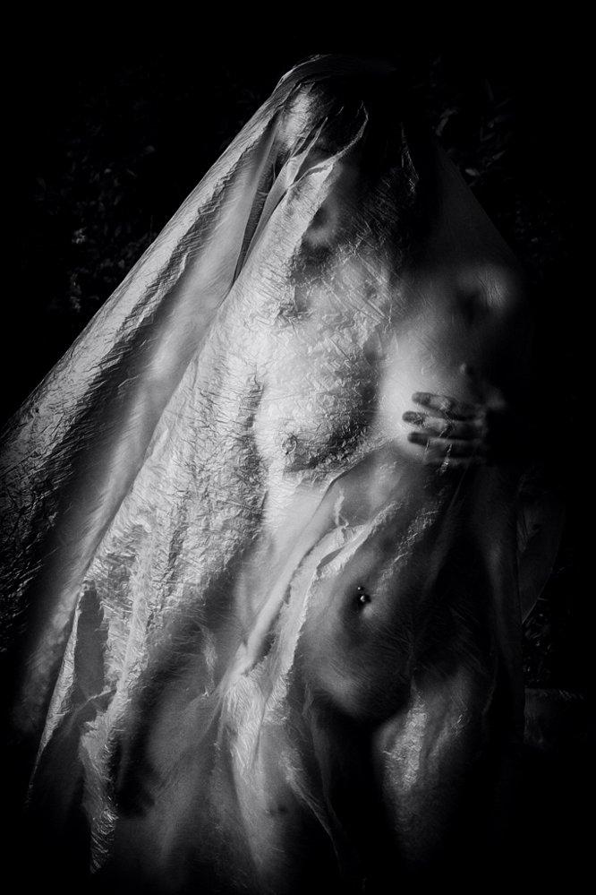 © Copyright Martial Rossignol