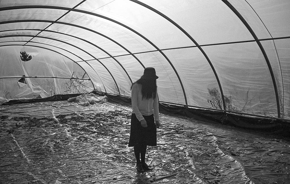 © Copyright Elisa Imperi