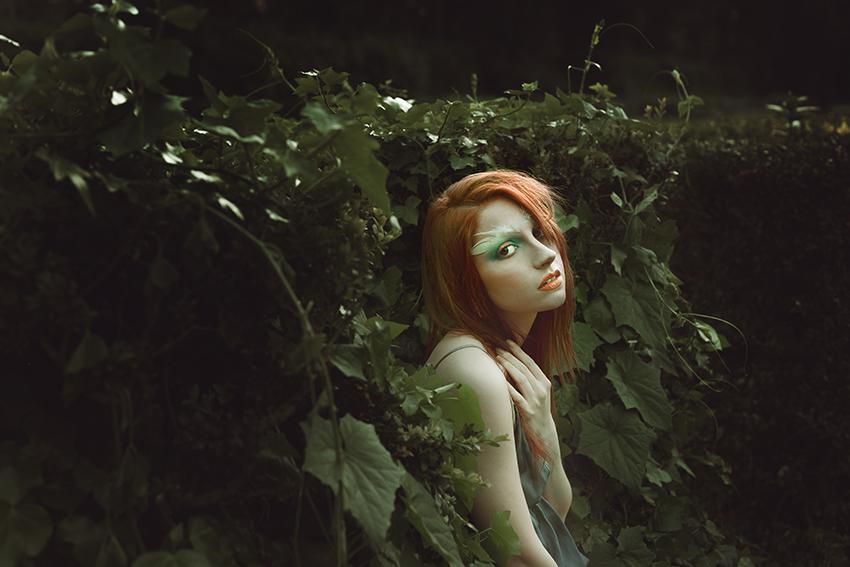 © Copyright Dayana Montesano