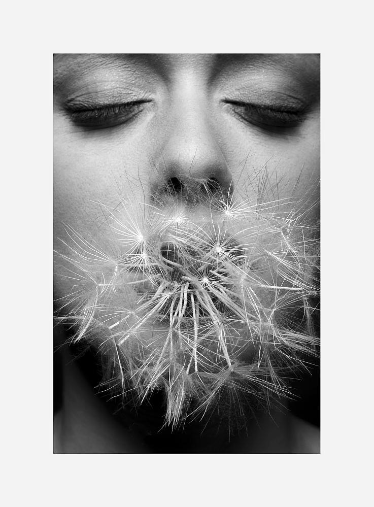 © Copyright Corinna Luce