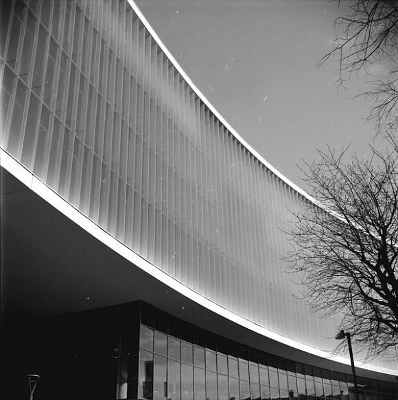 Le tue curve perfette © Copyright Luca Scarpa