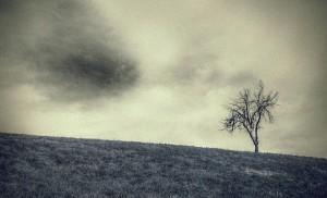 """""""Rimane solo il silenzio"""" © Enzo Crispino"""