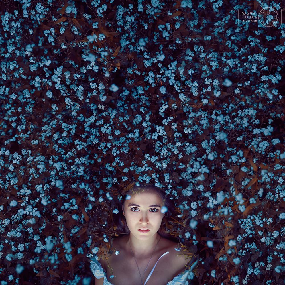 """Forget-me-nots"" © Darja Bilyk"