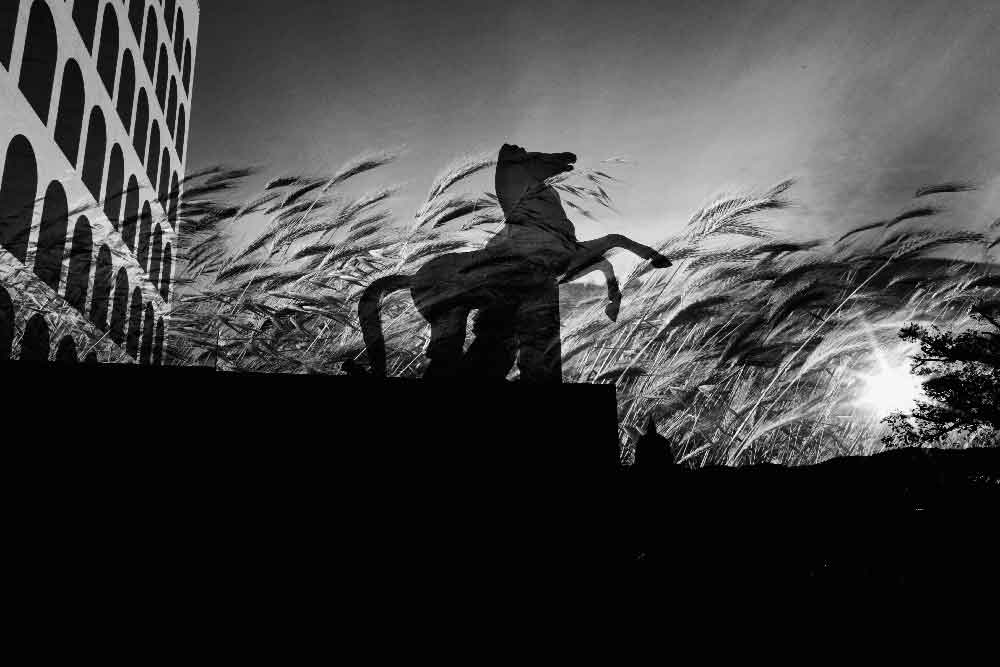 © Alessandro Amoruso