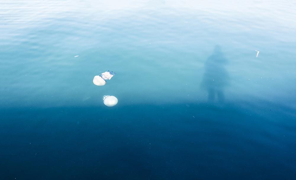 L'ora della calma © Katia Morichetti