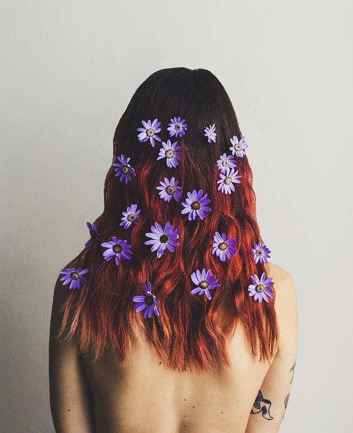 © AleMarc Bloom