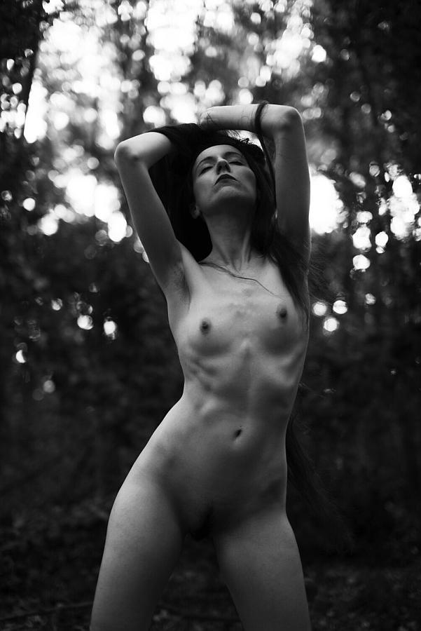 """""""Sensual forest"""" © Tekin Sahin"""