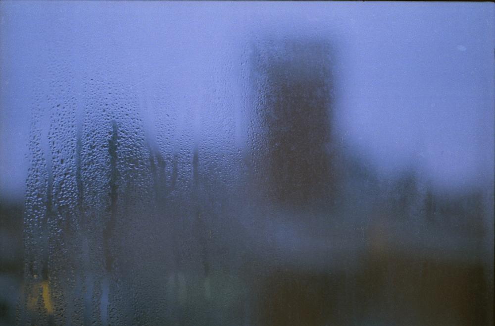"""Rain"" © Laura Cannistraro"