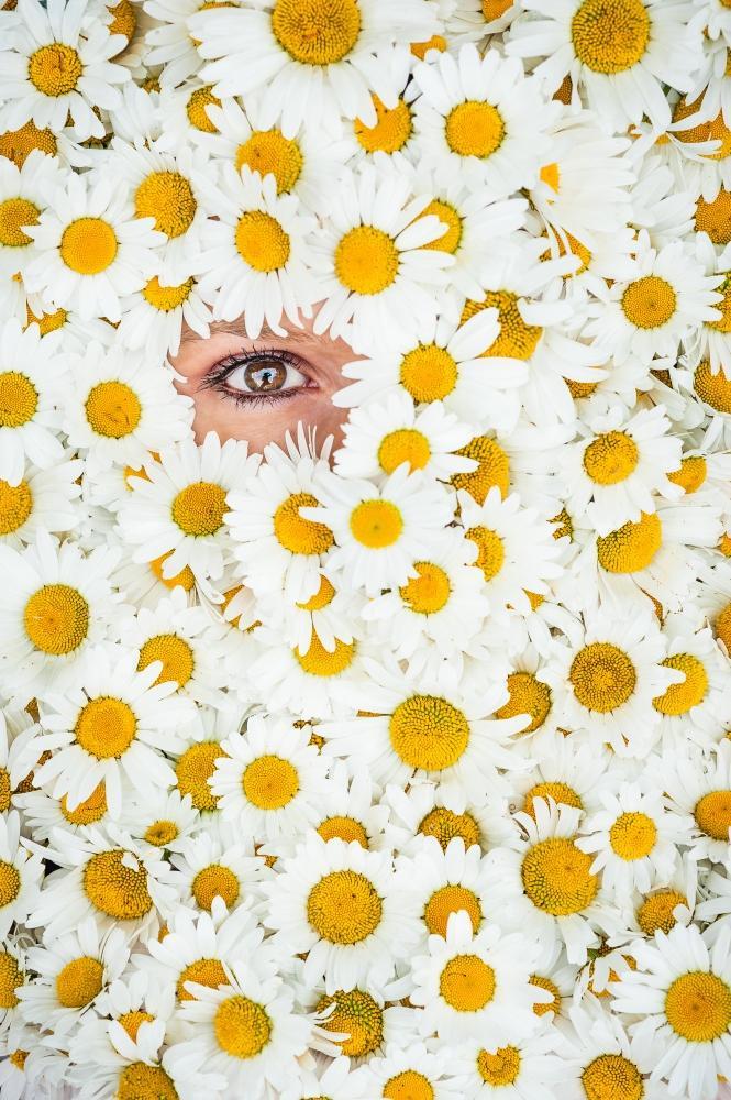 Daisy © Michaël Massart
