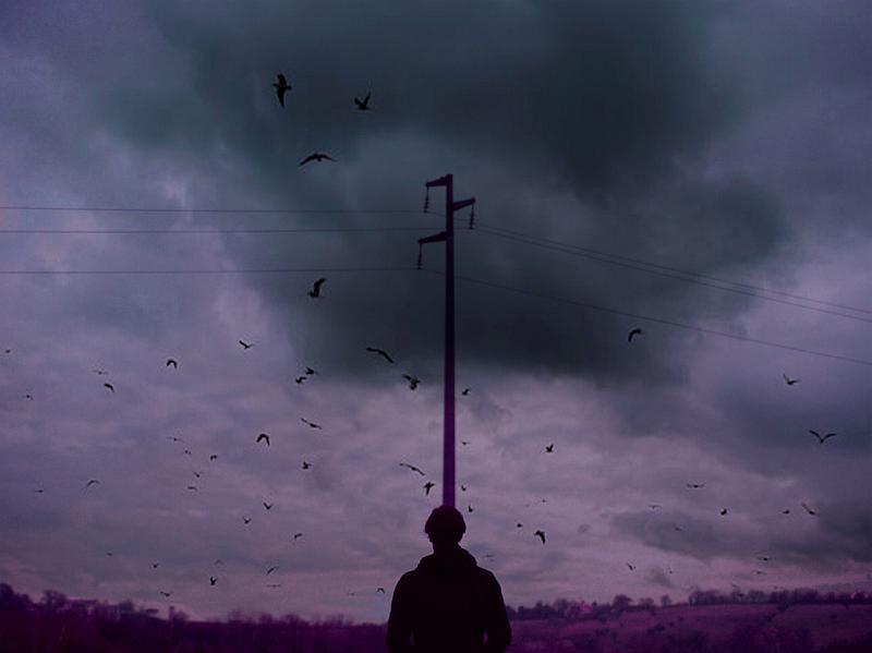 """""""Birdescape"""" © Camilla Ciovetta"""