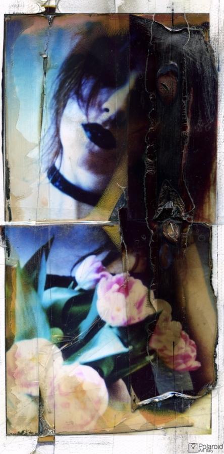 """""""Flowers"""" © Daniele Pezzoli"""