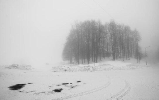 """""""The sound of silence"""" di Ida Di Pasquale"""