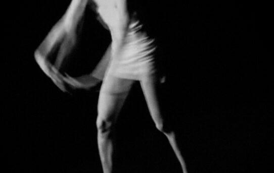 """""""Il balletto di Alicia"""" di Francesco Mercadante"""