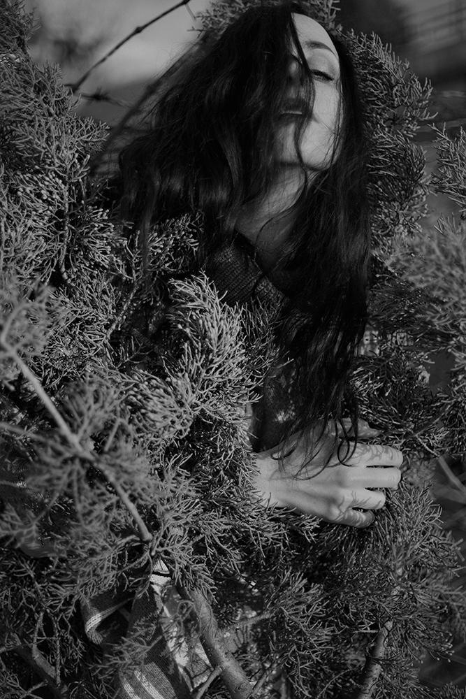 © Copyright Tatiana Minelli