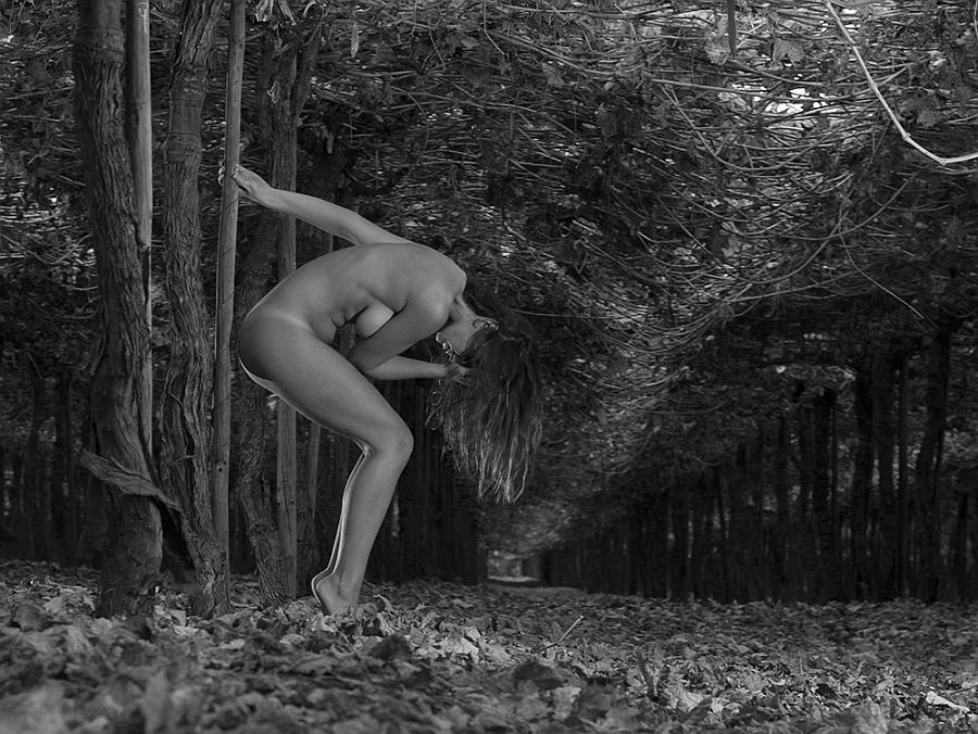 """""""Vineyard: woman and nature"""" by Paula Bertrán Salinas"""
